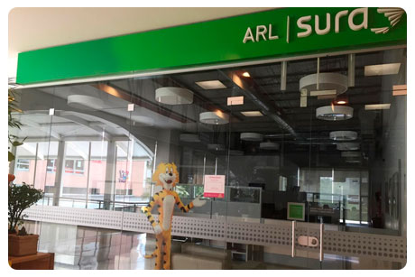 ARL Sura, Local 209