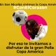 Copa América en San Nicolás